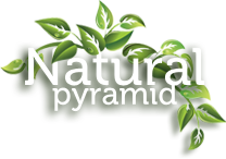 Logo Natural Pyramid
